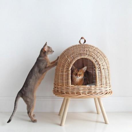 הום סטיילינג לחובבי חתולים