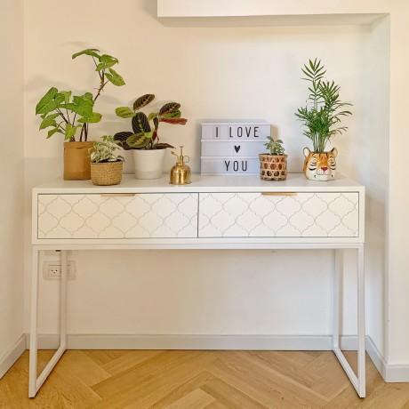 5 טיפים לגידול צמחים בבית